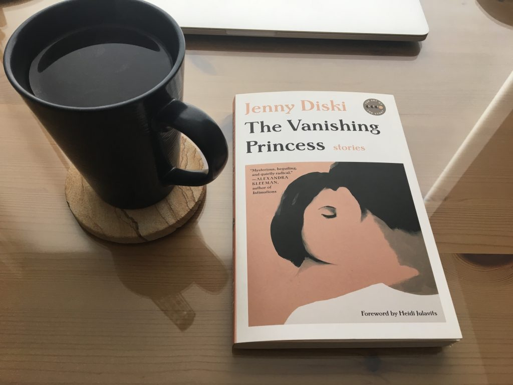The Vanishing Princess by Jenny Diski