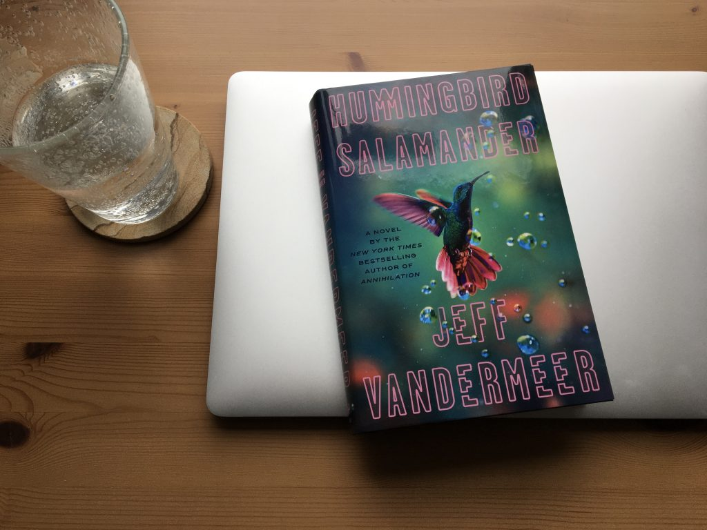 Jeff VanderMeer's novel Hummingbird Salamander