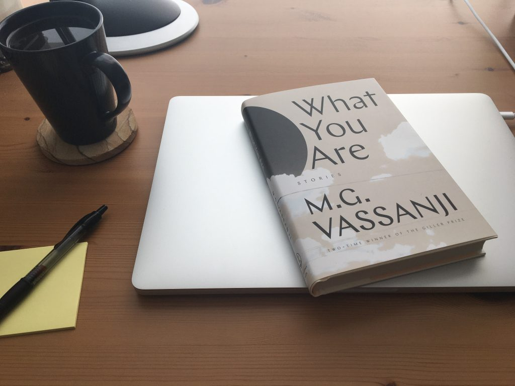 What You Are by M.G. Vassanji