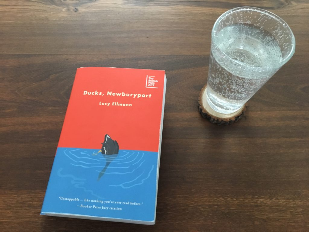 Lucy Ellmann's Ducks, Newbury is a propulsive stream-of-consciousness novel told more or less in a single, unbroken sentence.