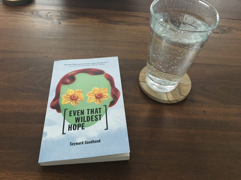 Even That Wildest Hope by Seyward Goodhand