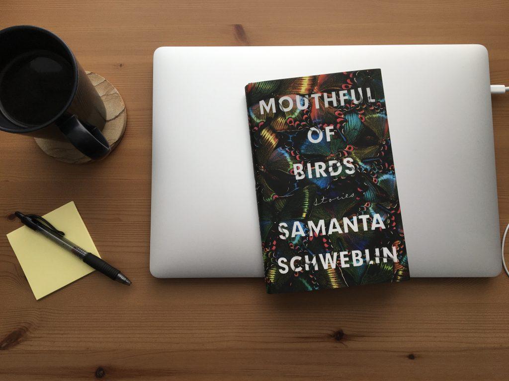 Mouthful of Birds by Samanta Schweblin